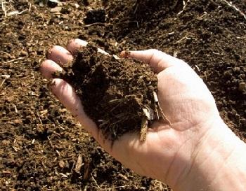 Tanah Subur, Tanah kompos, Tanah Gembur, Pupuk, Pemupukan