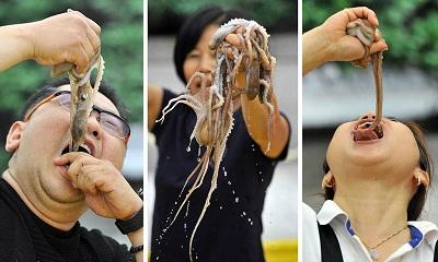 Gambar makanan bayi gurita Korea