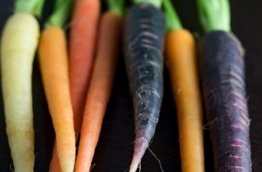 Macam-macam warna wortel