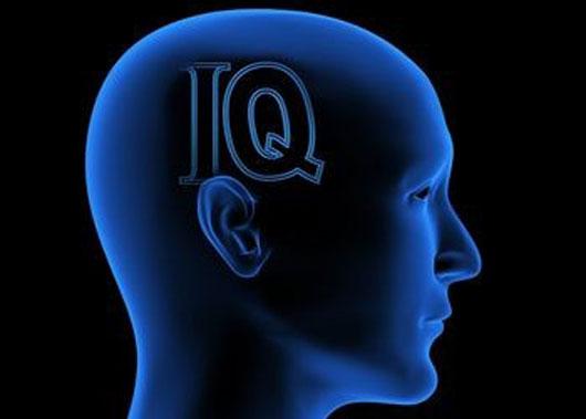 Tes IQ