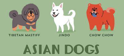 Contoh gambar kartun anjing