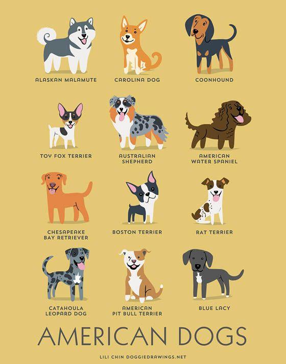 Gambar kartun anjing Amerika