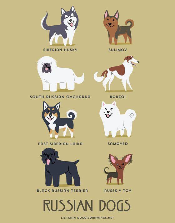 Gambar kartun anjing Rusia
